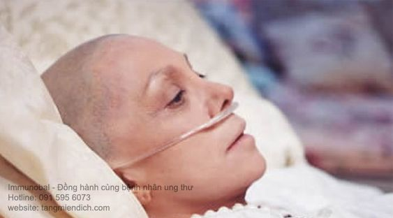 Đông trùng hạ thảo và ung thư