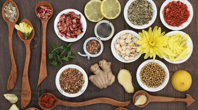 Bài thuốc dân gian chữa ung thư dạ dày
