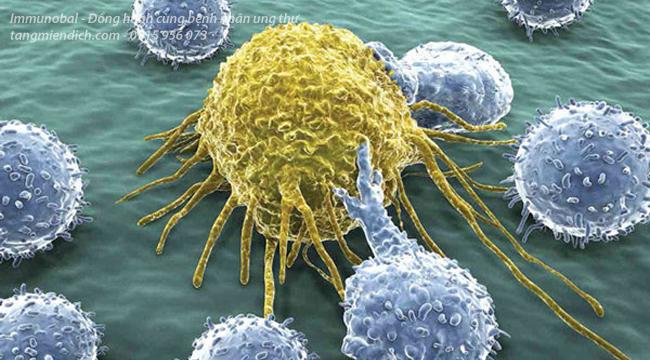 Liệu pháp miễn dịch trong ung thư