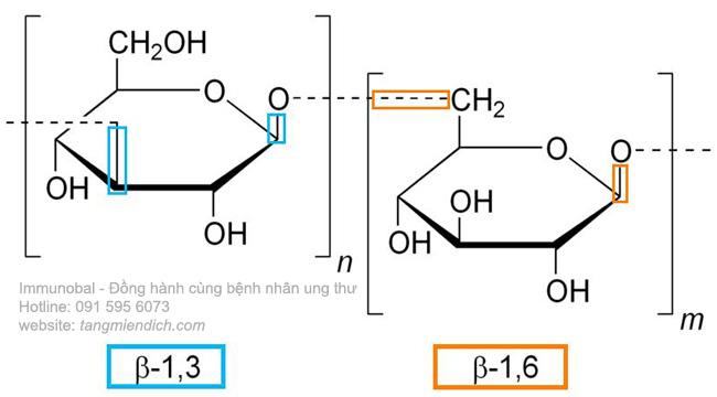 công dụng của beta glucan 01