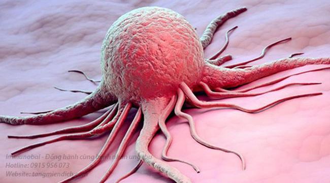 Xét nghiệm ung thư ở bệnh viện nào
