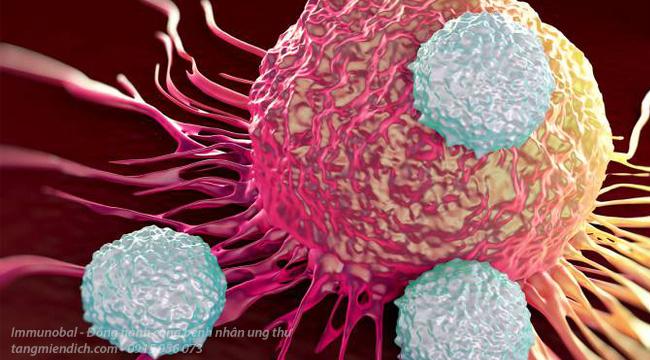 Liệu pháp miễn dịch có chữa khỏi được ung thư không