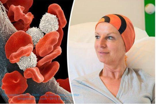 giấy xét nghiệm ung thư máu
