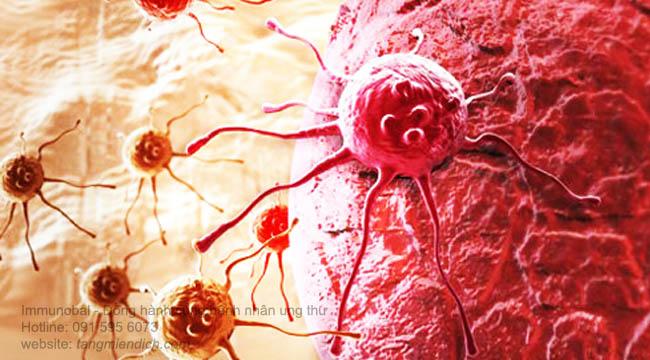 thuốc nam trị ung thư máu