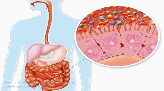 dấu hiệu ung thư tuyến tụy