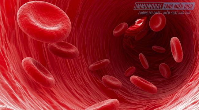 Cách điều trị bệnh ung thư máu