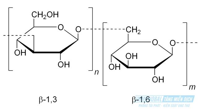 hoạt chất Beta Glucan